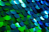 Blue and green sequin wedding photo booth backdrop in dallas texas